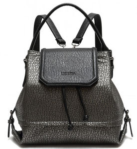 2a43116dde China 2015 The Most Popular Leaher Handbag or Backpack (xb804 ...