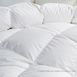 Top Quality Eco-Friendly White Quilt Cover pictures & photos