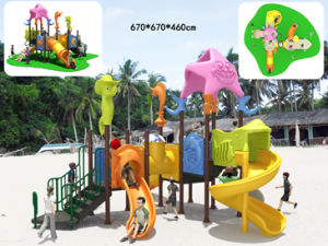 High Quality Outdoor Playground (BH04301)