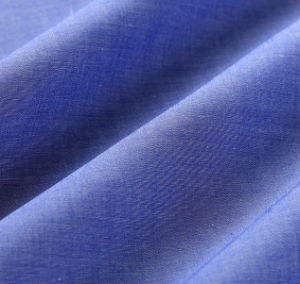 Cotton Thin Oxford Shirt Fabric pictures & photos