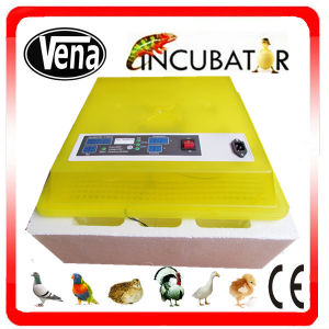 Small Mini Automatic Chicken Egg Incubator pictures & photos