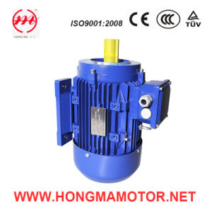 IEC Standard Three Phase Multispeed Asynchronous Motor (200L2-6P/4P-18.5/22KW) pictures & photos