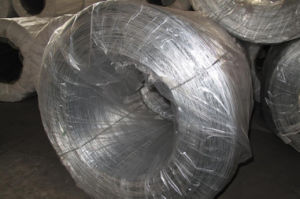 Hot Sale G I W Galvanized Iron Wire pictures & photos