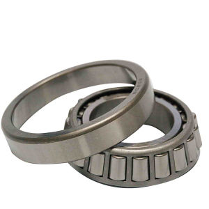 Single Row 30205 Taper Roller Bearing/Machine Bearing with Great Low Price