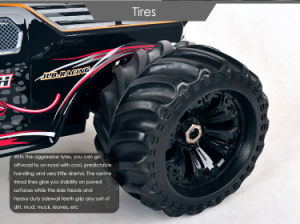 80km/H Fast Speed Golden Cheetah RC Monster Truck pictures & photos