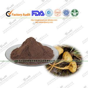 China Organic Maca Root Extract Powder 10: 1 for Man Sex Improvement