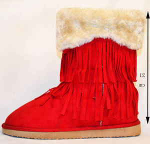 Women Fashion Snow Boots with Fringe Winter Shoes 2014 (A147002540)