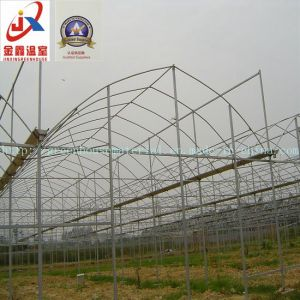 Multi-Span Tunnel Greenhouse Structure pictures & photos