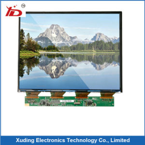 Hot-Selling 10 1 Inch Screen TFT-LCD Display 1024 (RGB) *600 Resolution