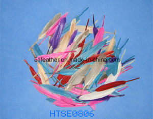 Hand-Selected Colored Goose Coquille/Nagoire/Feather pictures & photos