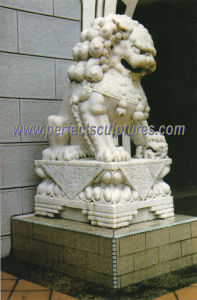 Stone Sculpture Marble Lion for Garden Animal Statue (SY-D011) pictures & photos