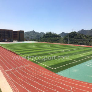 Iaaf Standard Athletic Spray Coat Tracks pictures & photos