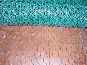 High Quality PVC Coated Hexagonal Wire Netting Good Price pictures & photos