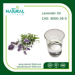 Wholesale High Quality Pure Lavender Essential Oil