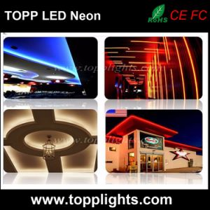 2017 New Professional Landscape LED Neon Flex Tube Light pictures & photos