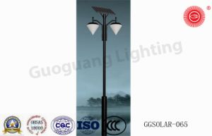 Ggsolar-065 Chinese Style Solar Energy Street Light pictures & photos