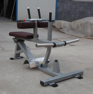 Excellent Nautilus Exercise Equipment / Seated Calf (SW-2012) pictures & photos