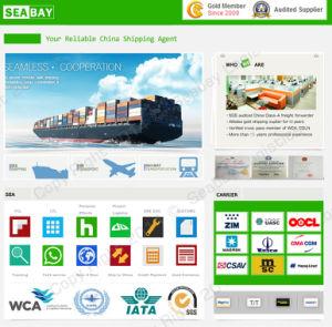 Professional Logistics Service China to Ethiopia - China