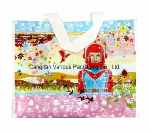 Printed Shopping Tote Carrier Bag for Toys Packaging pictures & photos