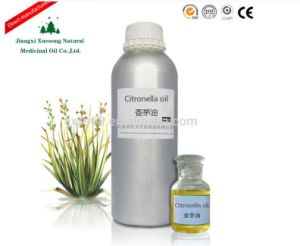 Jiangxi Xuesong 85% Pure Natural Citronella Oil Distillation Plant Manufacturer and Supplier From China