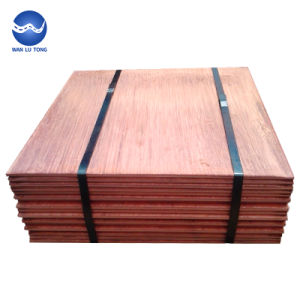 Wholesale Price Top Quality Customized Electrolytic Copper/Electrolytic  Copper Cathode