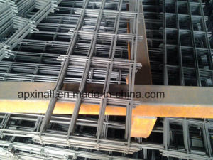 1.6mm Welded Mesh Panel 2X1m pictures & photos