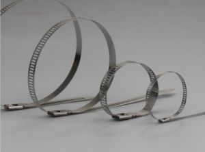 Multi-Hole Stainless Steel Tie 4.5*100mm