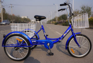 "New Developed 20"" Folding Cargo Tricycle (FP-TRCY034) pictures & photos"