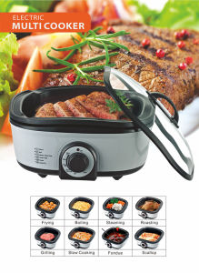 Multi Function Cooker (MT-01-1)