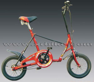 14′′newset Style High-Quality Folding Bikes (XR-FO1401)