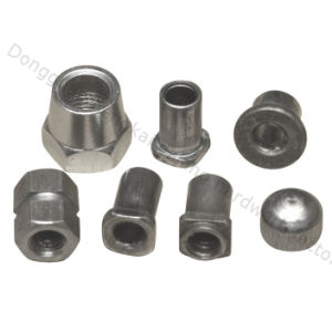 Hex Rivet Nuts for Light Fitting (HK019)