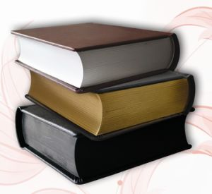Leather Curl Slip-in Photo Albums Ksa Market (PS8124)