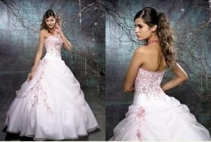 Wedding Gown&Wedding Dress &Bridal Dress (DX0008)