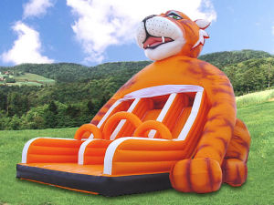 Inflatable Double Slides (LJF9019H)