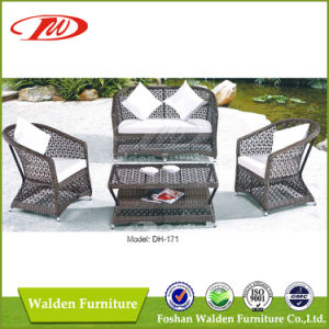 Special Woven Rattan Sofa Set (DH-171) pictures & photos
