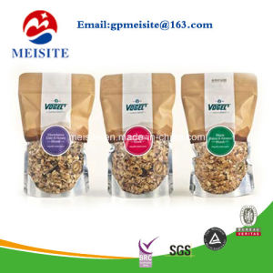 Laminated Material Stand up Plastic Bag for Dry Fruit Packaging /Pouch