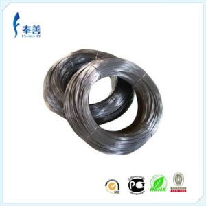 Nichrome Electric Heating Wire (cr20ni80, cr20ni35, cr20ni30, cr25ni20, cr15ni60)