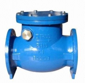 Domestic Water Systems Used Non Return Check Valve pictures & photos