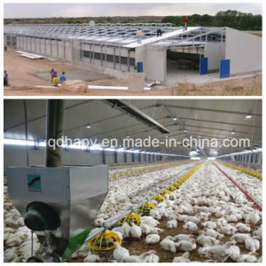 Professional Constructed Steel House with Full Set Equipment for Chicken pictures & photos