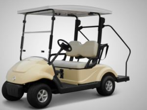 CE Approved 2 Seater Electric Golf Cart with Solar Penal Made by Dongfeng Motor for Sale