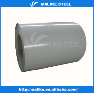 Hot Sales Galvanized Steel of Construction Building Materials