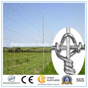 Hot Dipped Galvanized Wire Mesh Fixed Knot Fence /Field Fence