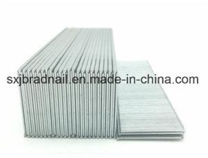 China hot sale gauge 16 t brads type galvanized nail for furniture hot sale gauge 16 t brads type galvanized nail for furniture greentooth Gallery