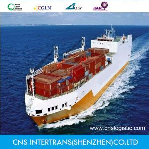 Excellent Service Shipping From China to Asuncion