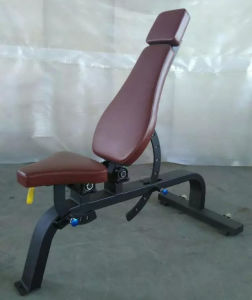 2015 Newest Body Building Machine Seated Leg Curl (SD1001-A) pictures & photos