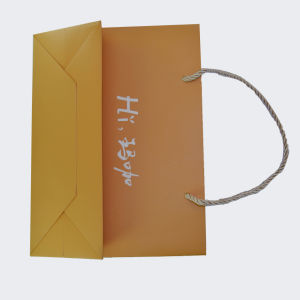 Custom Printed Paper Gift Bags pictures & photos