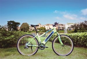 26 Inch Aluminum Alloy City Bicycle, Steel Bicycle