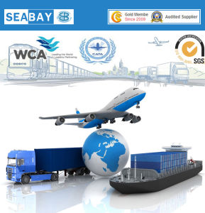 International China Logistics Company to Atlanta USA - China