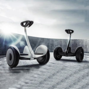New Type! 2 Wheels Balancing Stand up Mini Electric Scooter