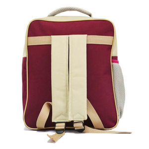 Wholesale Teenager Backpack Book Student School Double Shoulder Bag pictures & photos